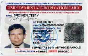 Image on 2011 Employer Authorization Card